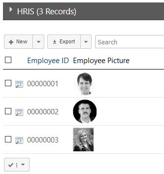 Database Image List