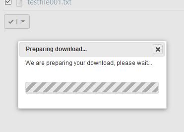 Preparing Zip File